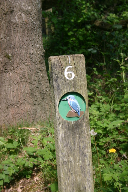 6 Kingfisher Trail