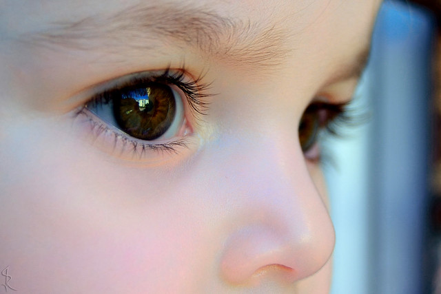 Newborn Babies Colored Eyes Baby Eye Color