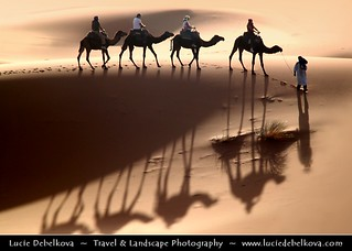 Morocco - Merzouga Sand - Erg Chebbi Dunes - Shadows of the Caravan