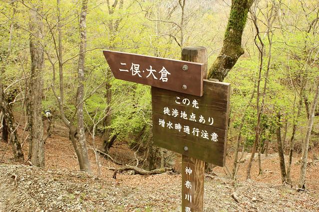 20110429_塔ノ岳(表尾根)_0052