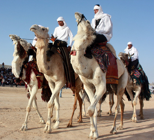 Diplomats discover charm of Tunisian Sahara