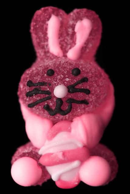 Gummy The Bunny
