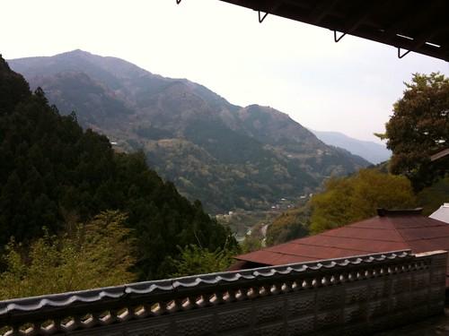 vacation holiday japan asia shikoku hanami 2011 otoyocho