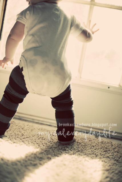 baby legs love