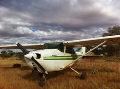 airline, aviation, airplane, propeller driven aircraft, wing, vehicle, propeller, cessna 172, aircraft engine,