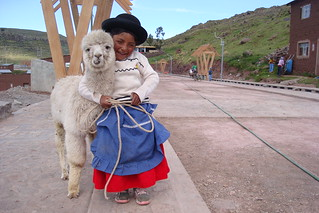 Llama and Kid