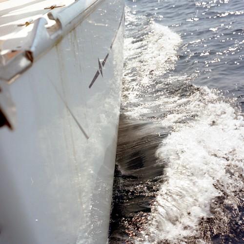 linea di galleggiamento