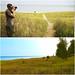Look, Indiana grassy dunes by daveynin