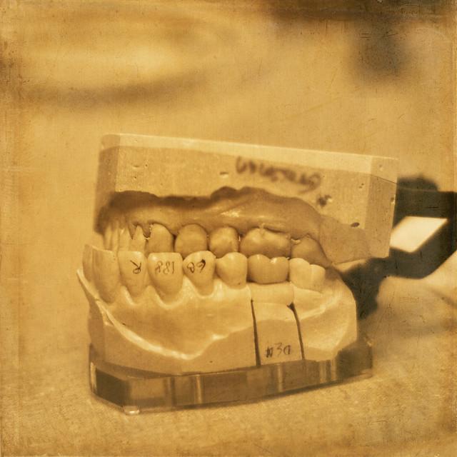 ameritas dental network