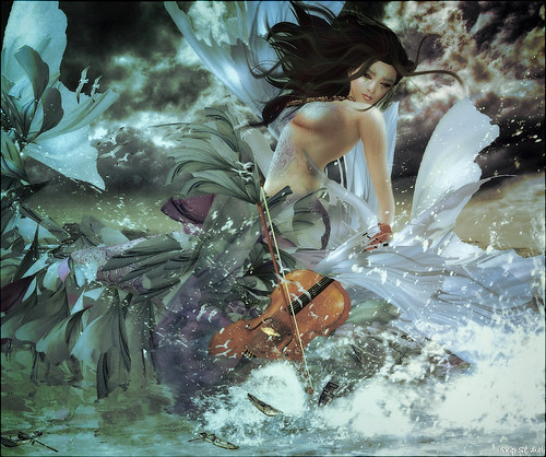 Cao~Caoimhe's Symphony...