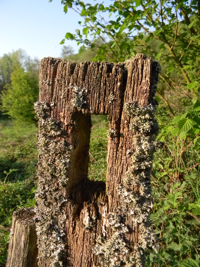 Old Fence Post Frant to Tunbridge Wells