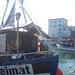 Frischer Fisch am Hafen Sassnitz