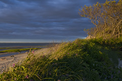 20110602 - Sunset Light at Robbins Hill Beach