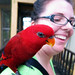 2011.04.13 - Marisa is Attacked By Parrots