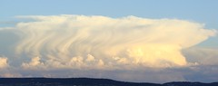 Evening Thunderhead #2