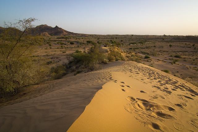 Desierto de Thar. India.