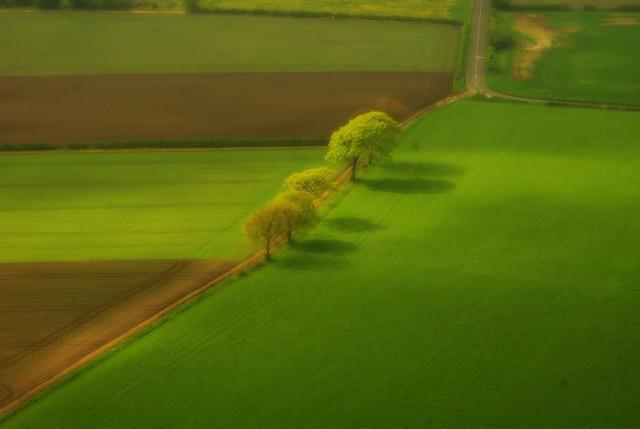 England's Springtime