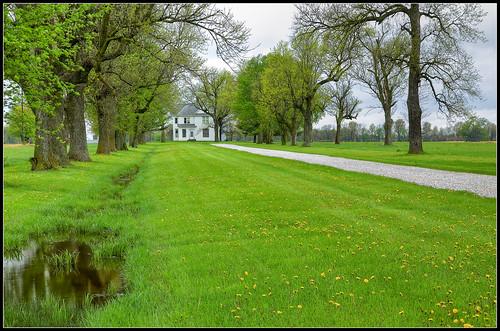 county trees house spring farm missouri lane dandelions audrain