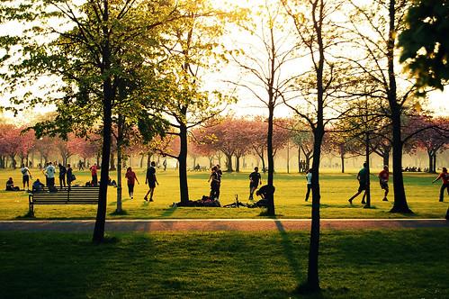 Edinburgh, Meadows
