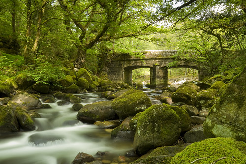 Shaugh Prior Bridge, Dartmoor