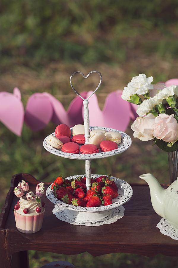 strawberries, macaroons, birthday picnic, fashion blog, אפונה בלוג אופנה, תותים, מקרונים, פיקניק, קינוחים, מתוקים, רעיון ליומולדת