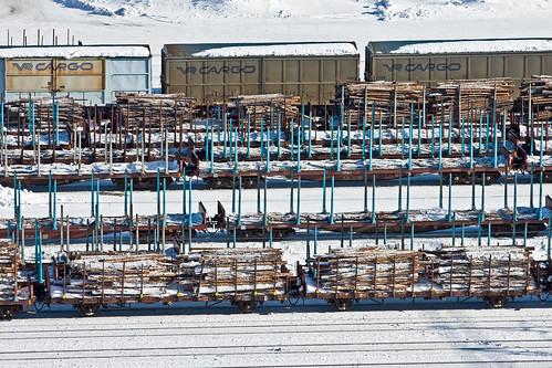 winter tree car station finland wagon timber railway cargo kemi
