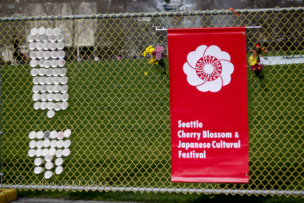 Seattle Cherry Blossom & Japanese Cultural Festival