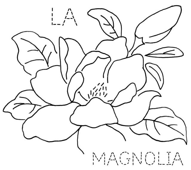 Magnolia Flower Line Drawing : Free clipart black and white magnolia joy studio design