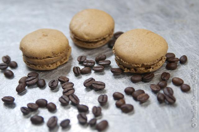 Macarons Moka