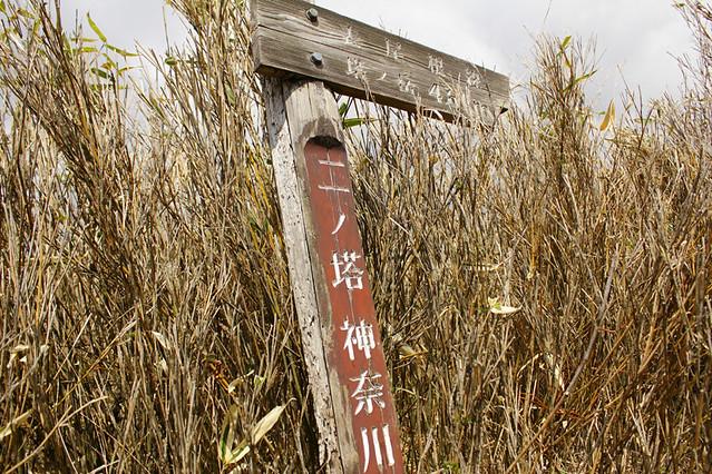 20110429_塔ノ岳(表尾根)_0014