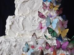 Edible Butterflies - All Sorts