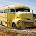 1953 GMC Bus 8681 by Paul Rioux