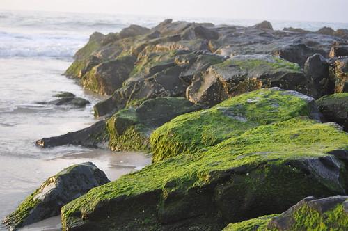 beach sunrise jetty jerseyshore beachhaven