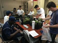 Georgetown University Hoyas (men's basketball team) visit the Orchard