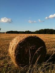 hay bail in a field 2 - Photo of Auty