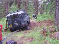 Chris Sutcliffe stuck in the woods.