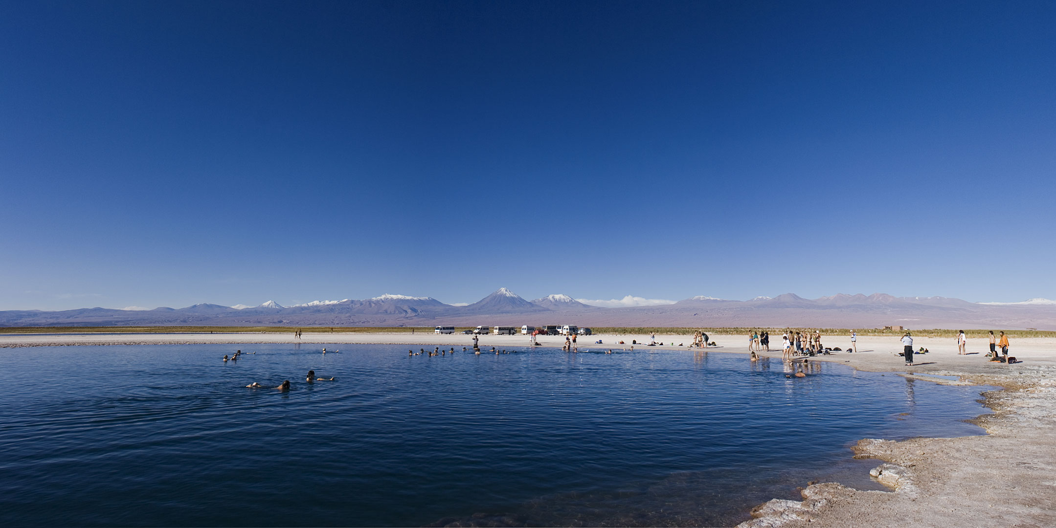laguna cejar | Laguna Cejar Atacama Chile | By: Fernando ...