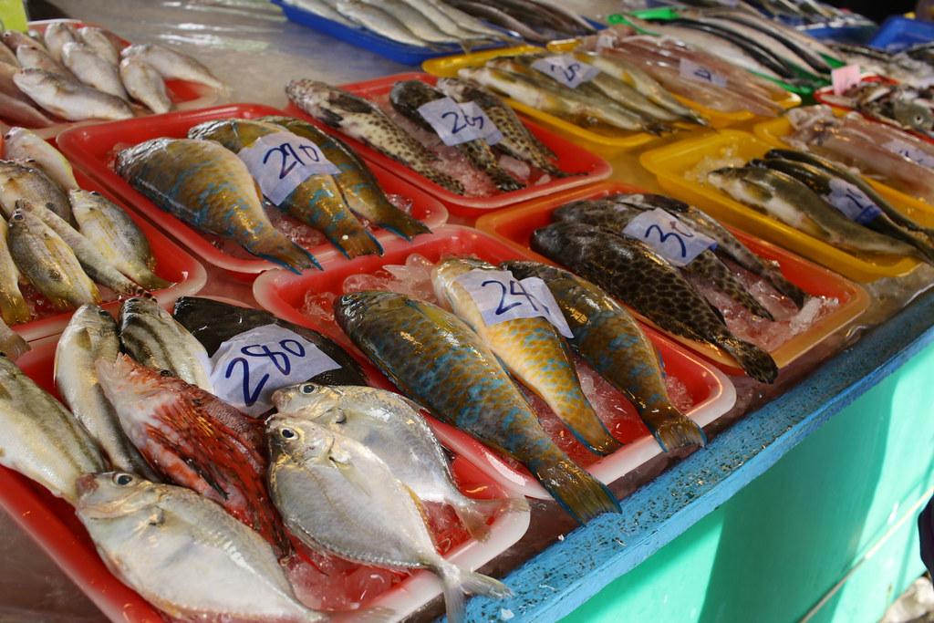 梓官觀光漁市場 (20)