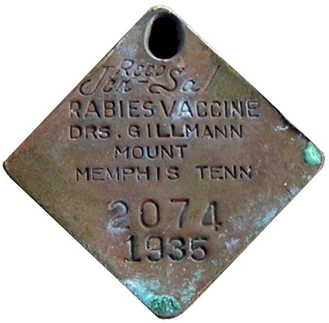 The Importance of Pet Rabies Tags |Dog With Rabies Tag