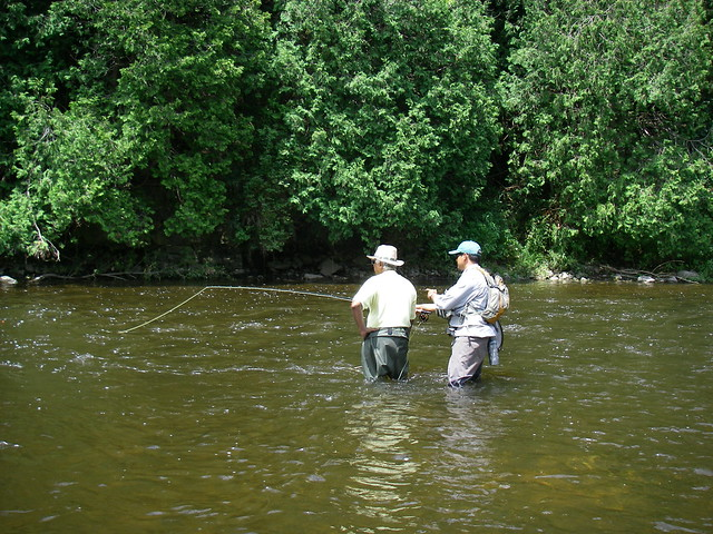Fly fishing lessons on the Grand River