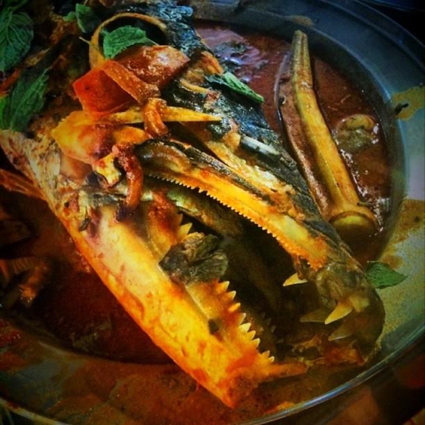 Demon fish head curry breakfast anyone explore a r e for Fish head app