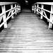 Bridge by Pimthida