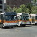 MUNI BUSES/TROLLEY COACHES--612R, 5071 and 4529 at Ferry Plaza by milantram