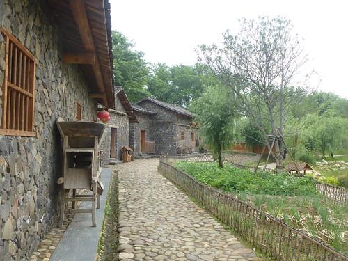 Jiangxi-Yushan (95)