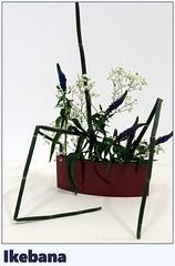 X Gran Exposición de Ikebana-037