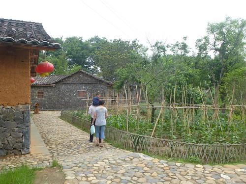 Jiangxi-Yushan (94)