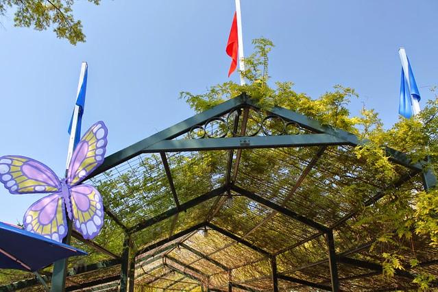 Carowinds In Bloom 2014