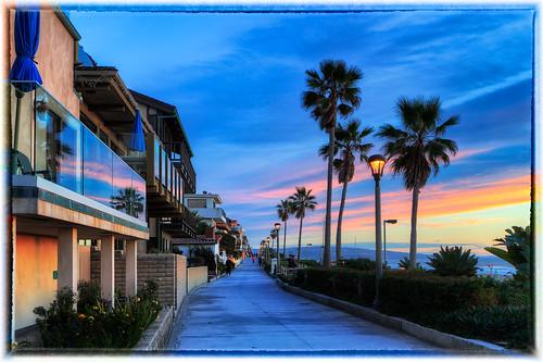california sunset usa plant tree beach landscape us unitedstates palmtree manhattanbeach thestrand hdr elsegundo 2010 noiseware elporto photomatix imagenomic tumblr canon7d niksilverefex mygearandme