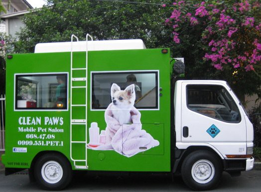 Announcing doggie love mercato centrale our awesome for 4 paws pet salon