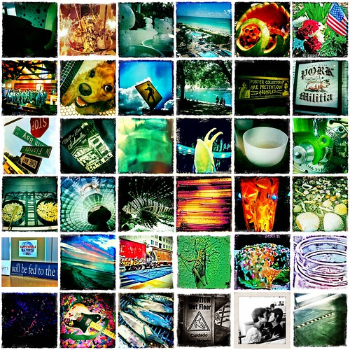 365 * 2011 Mosaic V (Days 145 - 180) by elawgrrl